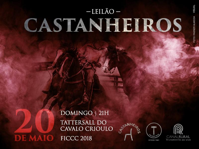 Leilão Castanheiros