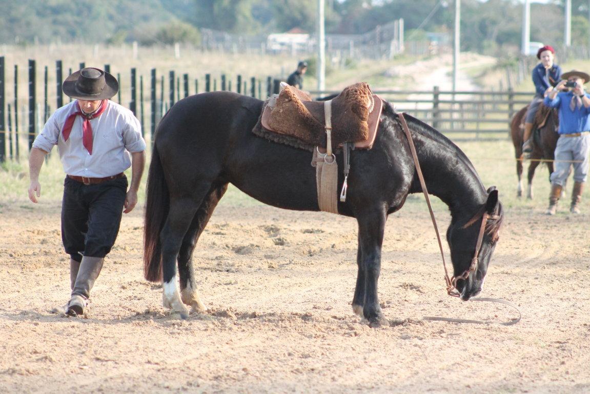 Cabanha Sabiendas promove 4º Prova de La Rienda