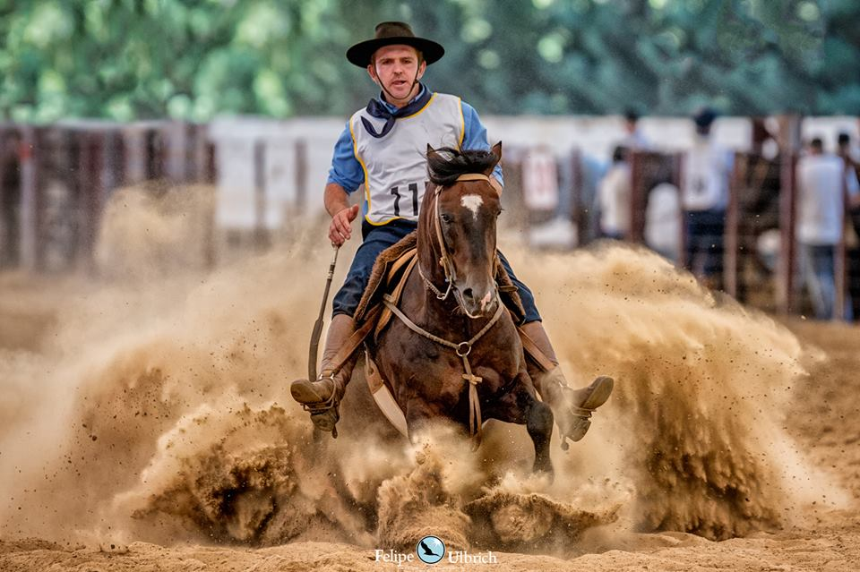 Em Caxias do Sul, raça é celebrada com a 14ª Festa do Cavalo Crioulo