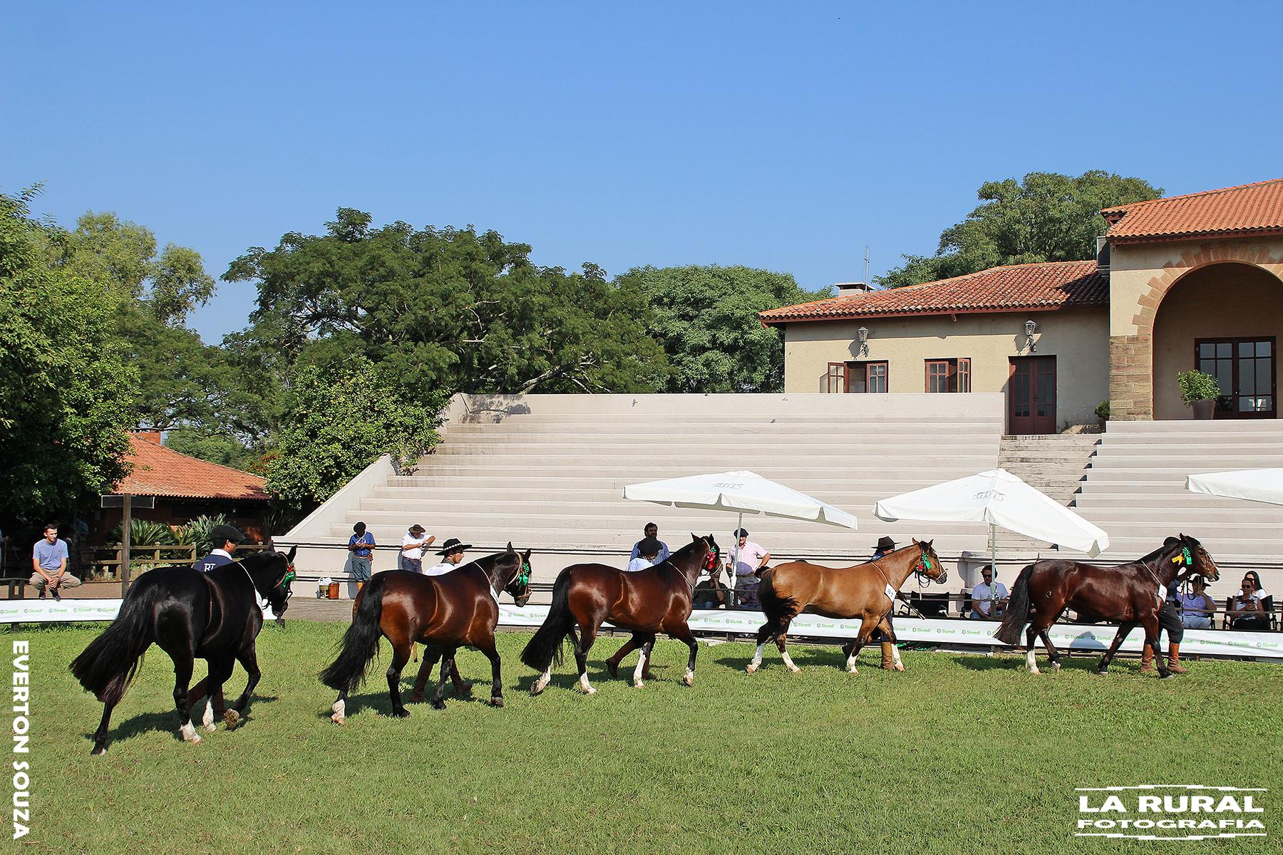 Ciclo de Exposições Passaporte chega à Uruguaiana no final de semana
