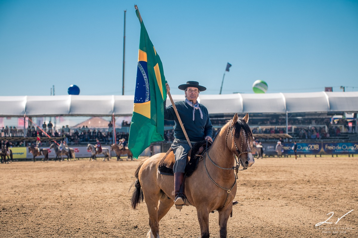 Bolívia: um novo mercado internacional abre portas para o Cavalo Crioulo