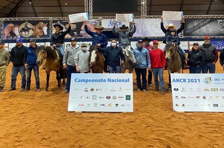 Cavalo Crioulo é destaque no maior evento de rédeas da América Latina